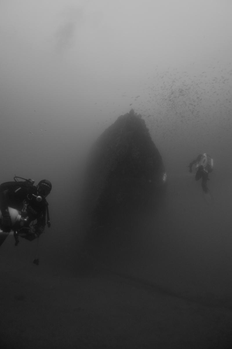 Mes dernières plongées Marseillaises _dsc3710