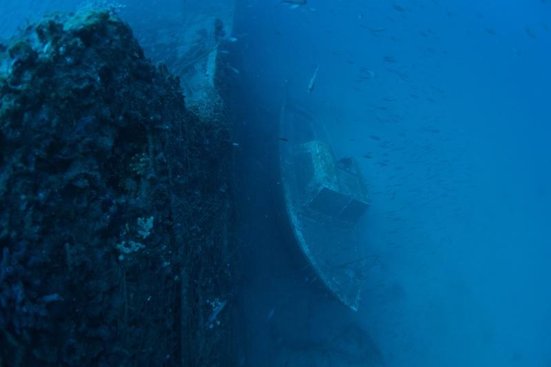Mes dernières plongées Marseillaises _dsc3811