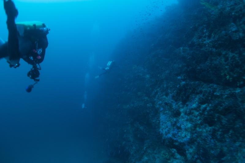 Mes dernières plongées Marseillaises _dsc3822