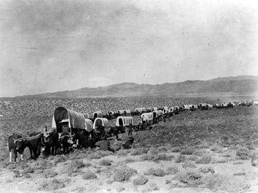 Des pistes et des wagons... 8966db10