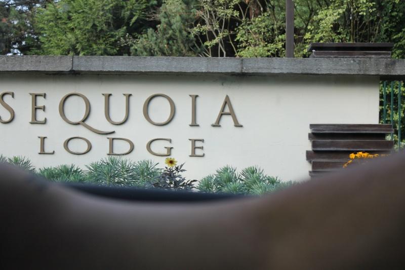 Pré TR du 17 au 19 juillet au Séquoia Lodge et TR Img_0613