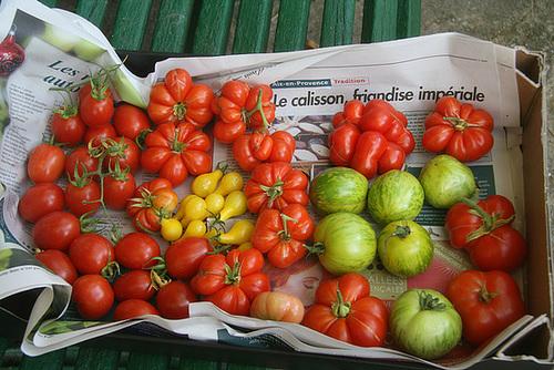 """Concours """"fruits et légumes"""" - les votes 95857810"""