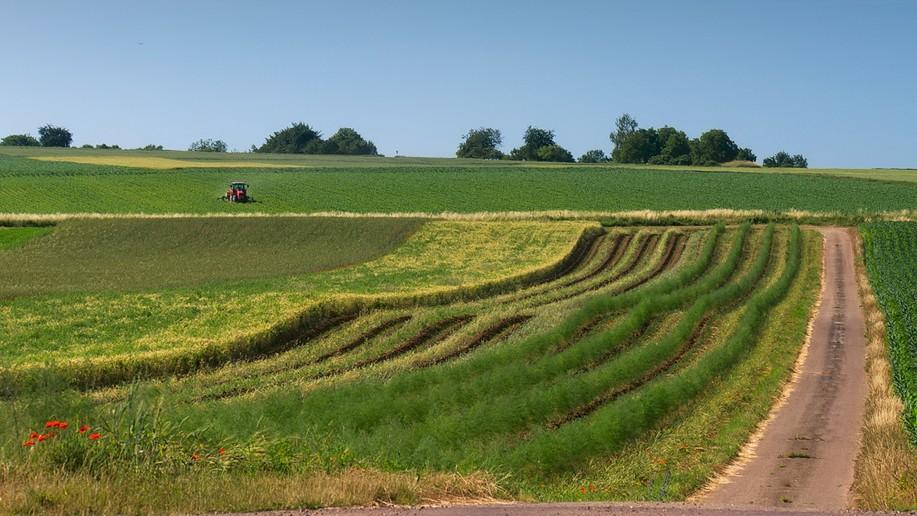 Agricole P1180713