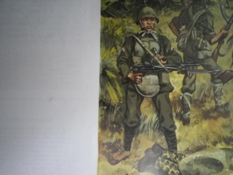 Plaques par balles armée impériale japonaise: Imgp7419