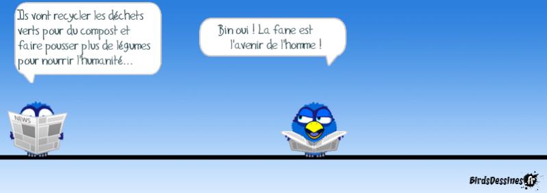 Les Birds - Page 12 14343510