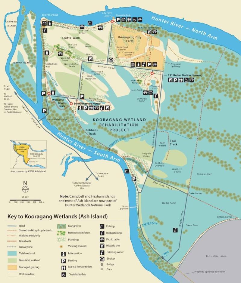 La mangrove à Kooragang, Ash Island, dans le parc national Hunter Wetlands , en Australie. Koorag11