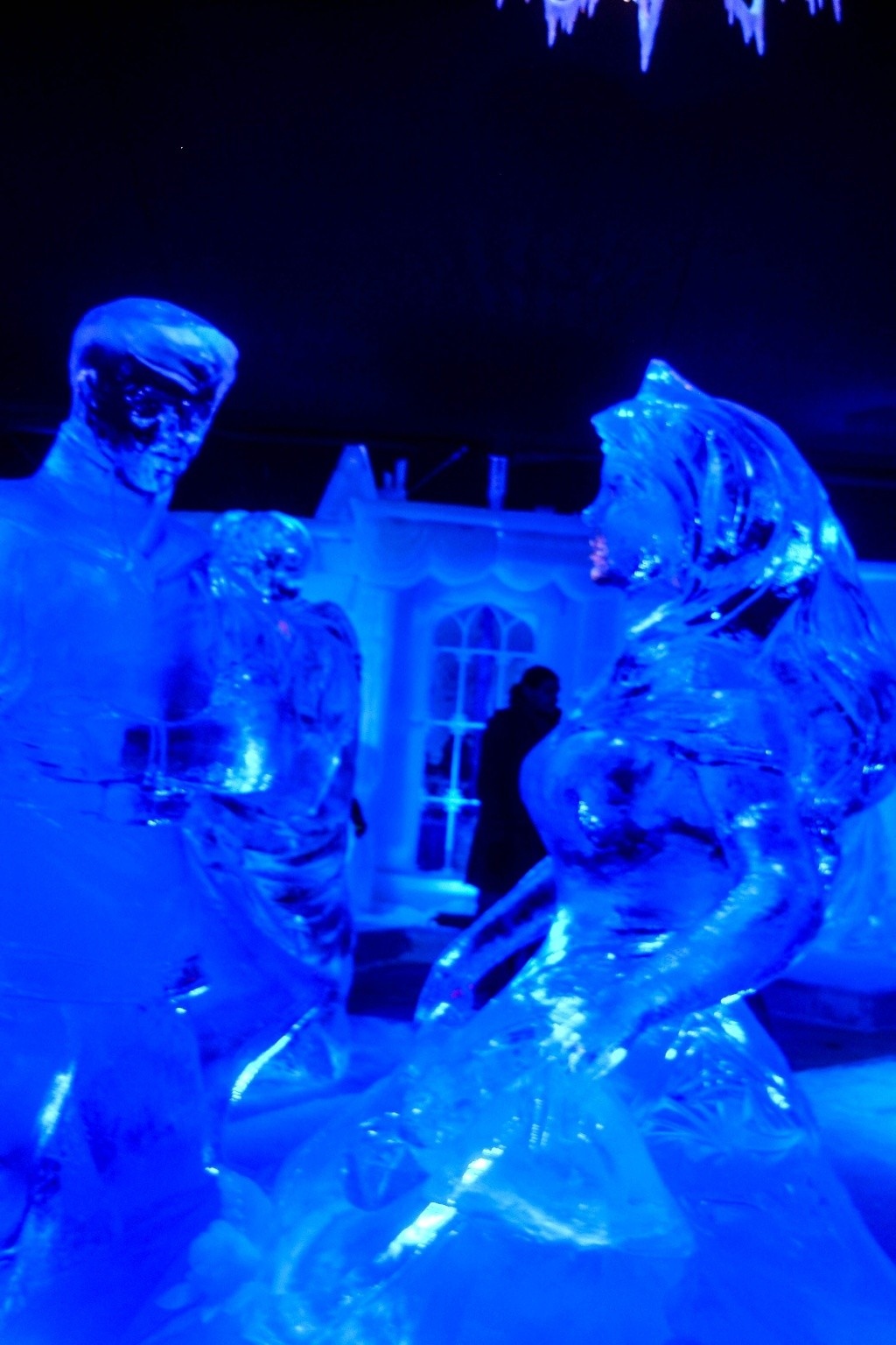 Festival de sculptures sur glace de Bruges - Belgique Ss850111