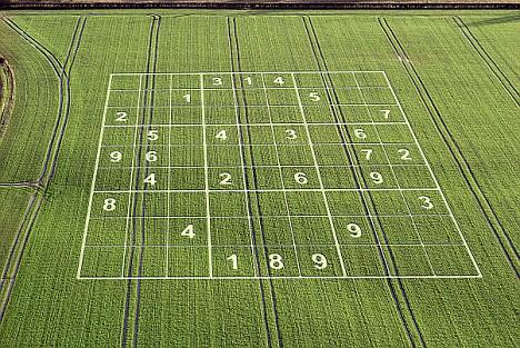 Les crop circles Articl10