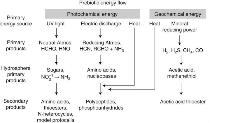Bioenergetics and Life's Origins Lopiop10