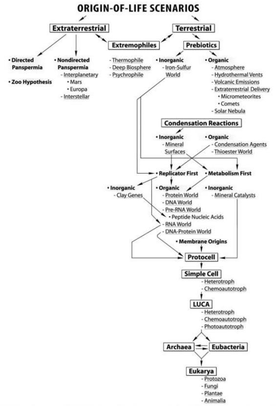 The naturalistic approach of origin of life scenarios Xcvvxc10