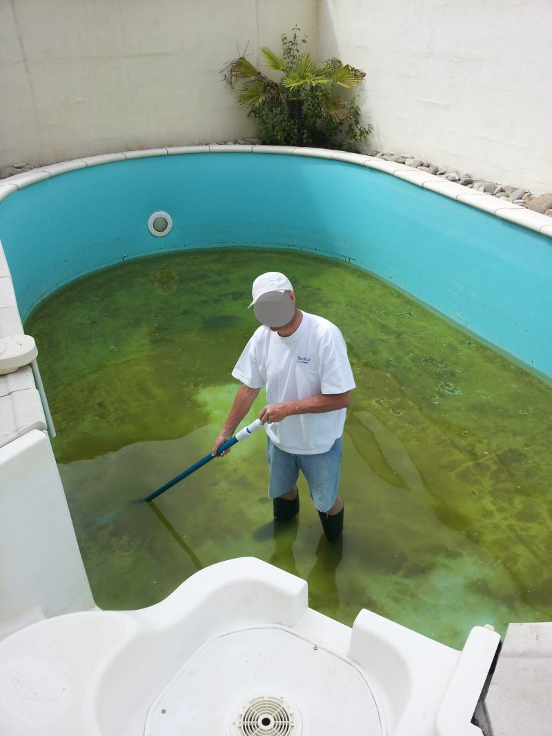 problème : fine peliculle verte au fond 2012-010