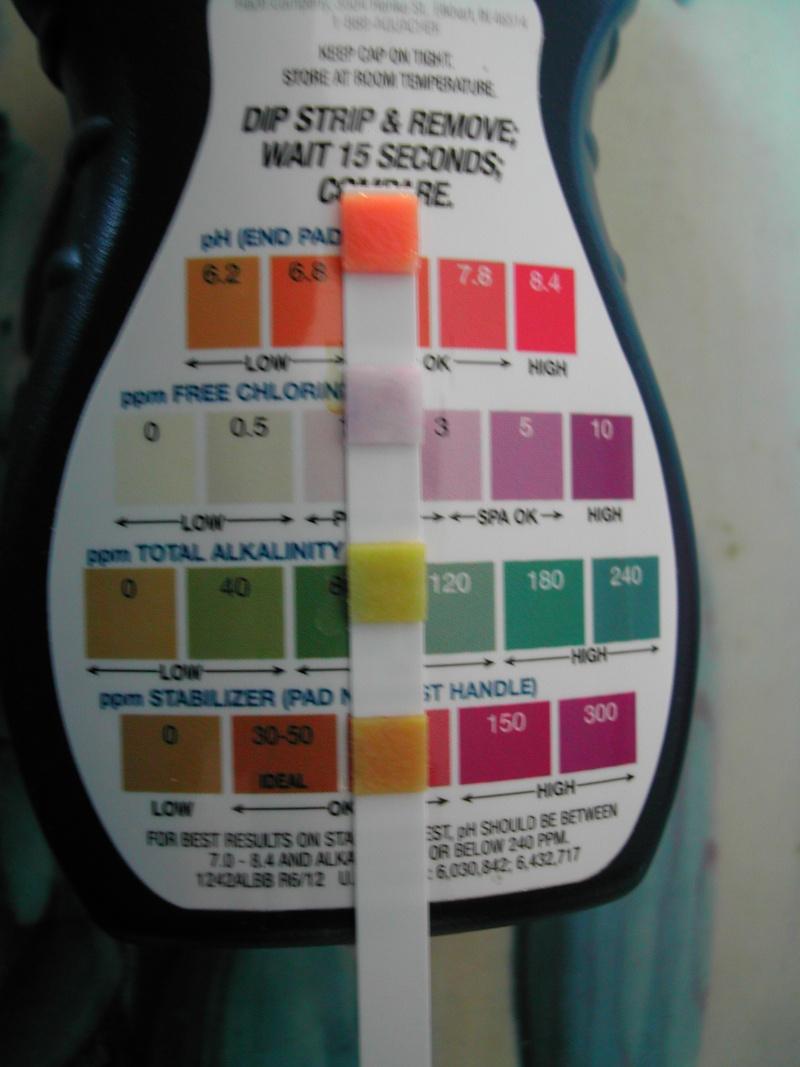 Traitement de l'eau par eau de javel - Page 12 Dscn4810