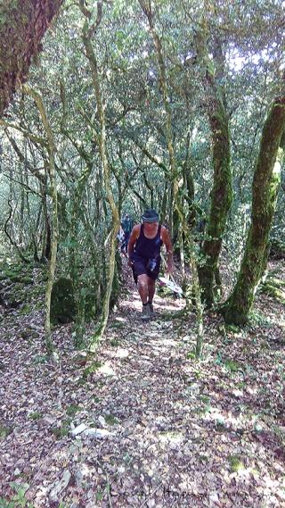 Sur le Chemin des Cadeules - Balade du 02 Août 2015 02_img10
