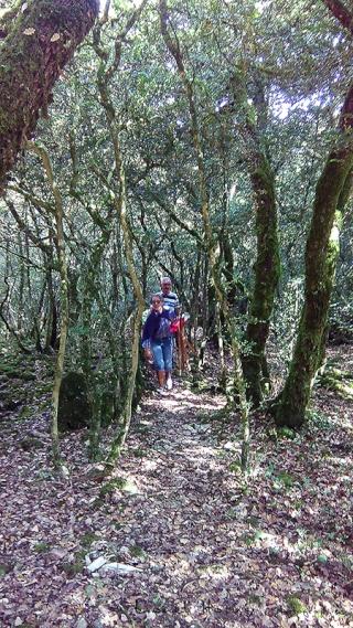 Sur le Chemin des Cadeules - Balade du 02 Août 2015 03_img10