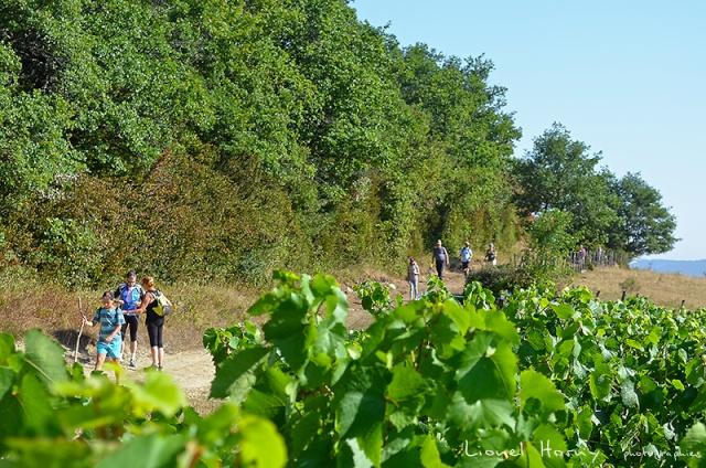 Sur le Chemin des Cadeules - Balade du 02 Août 2015 09_dsc10