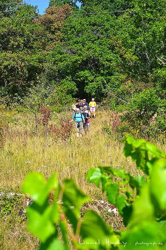 Sur le Chemin des Cadeules - Balade du 02 Août 2015 13_dsc10