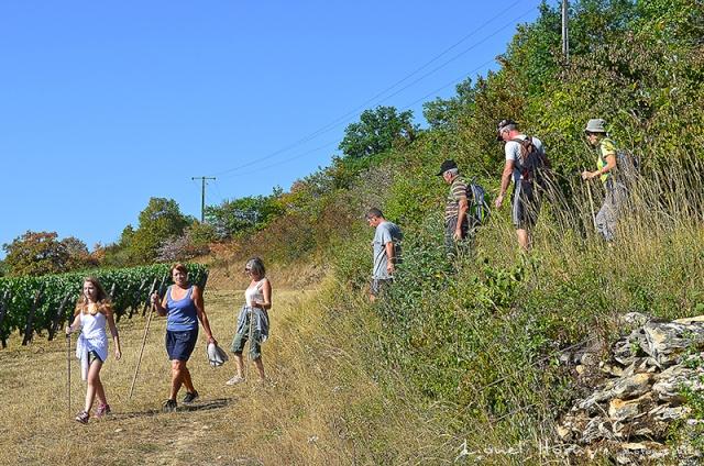 Sur le Chemin des Cadeules - Balade du 02 Août 2015 16_dsc10
