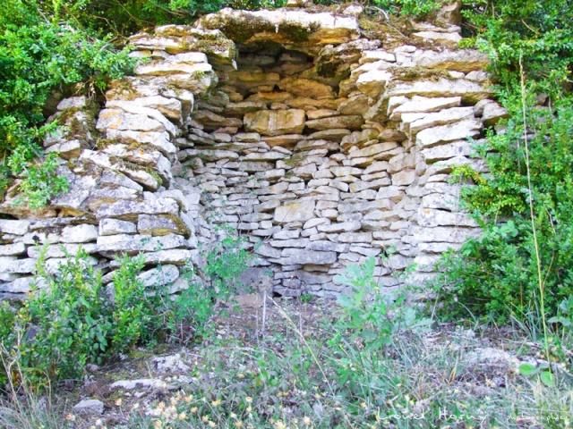 Sur le Chemin des Cadeules - Balade du 02 Août 2015 27_les10