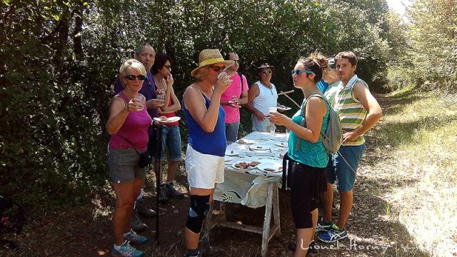 Sur le Chemin des Cadeules - Balade du 02 Août 2015 39_img10