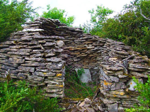 Sur le Chemin des Cadeules - Balade du 02 Août 2015 42_le_10