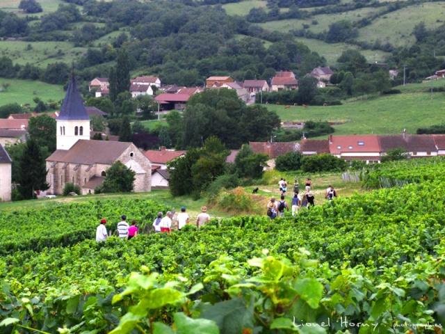 Sur le Chemin des Cadeules - Balade du 02 Août 2015 45_dsc10