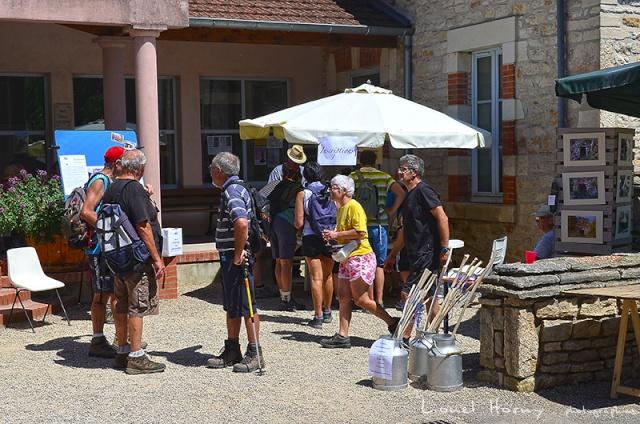Sur le Chemin des Cadeules - Balade du 02 Août 2015 50_dsc10