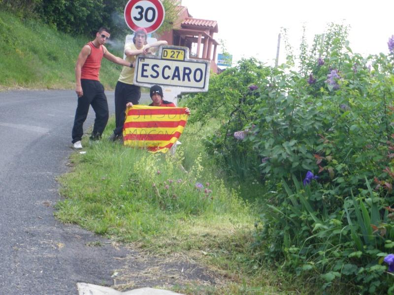 Escaro Escaro10