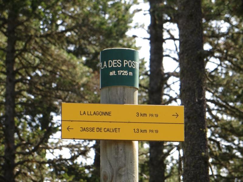 La Forêt domaniale de La Llagonne Img_3112