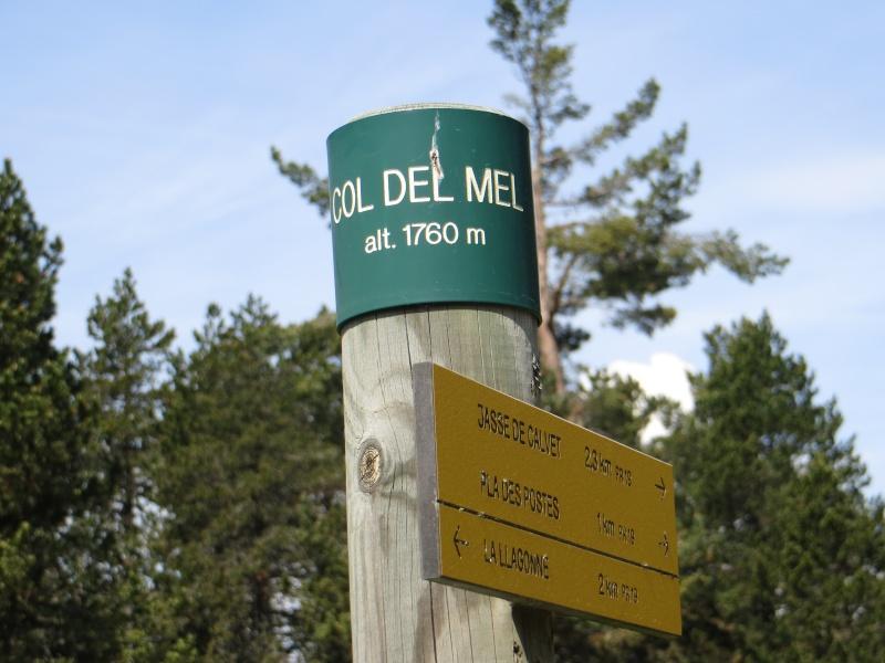 La Forêt domaniale de La Llagonne Img_3210