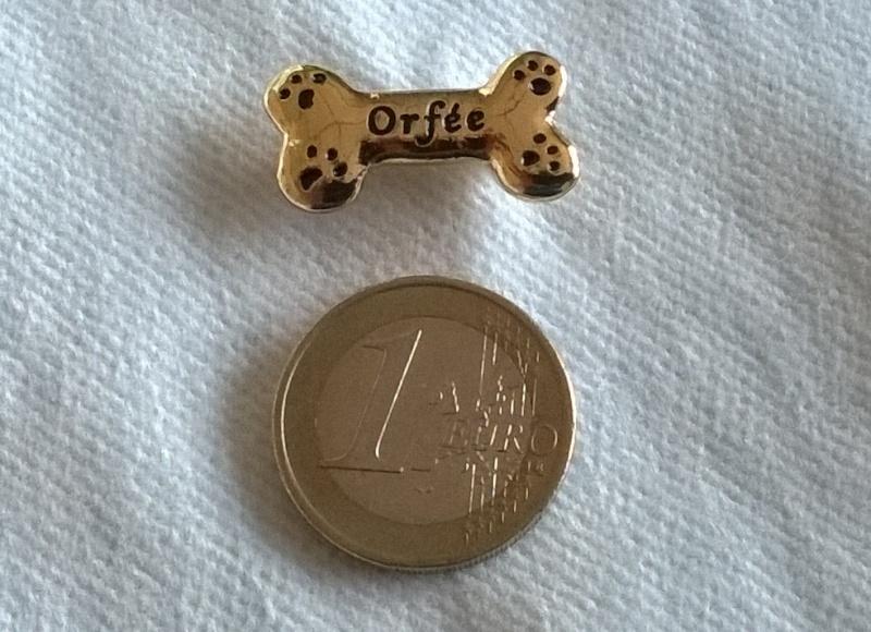 PIN'S Orfée  2015-010