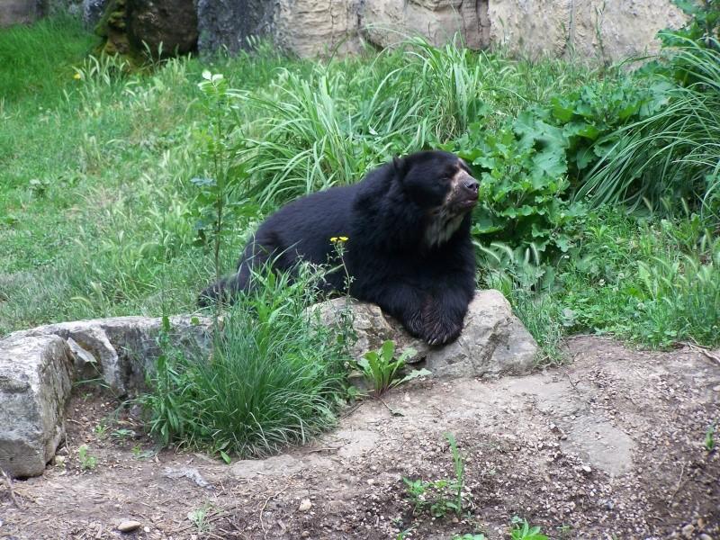 Parc animalier de la tête d'or. 100_3011