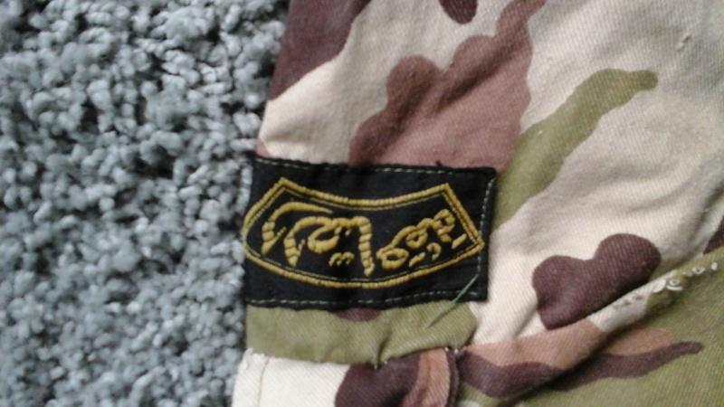 Egyptian Special Forces Dense Scrambled Egg Jacket 20150611