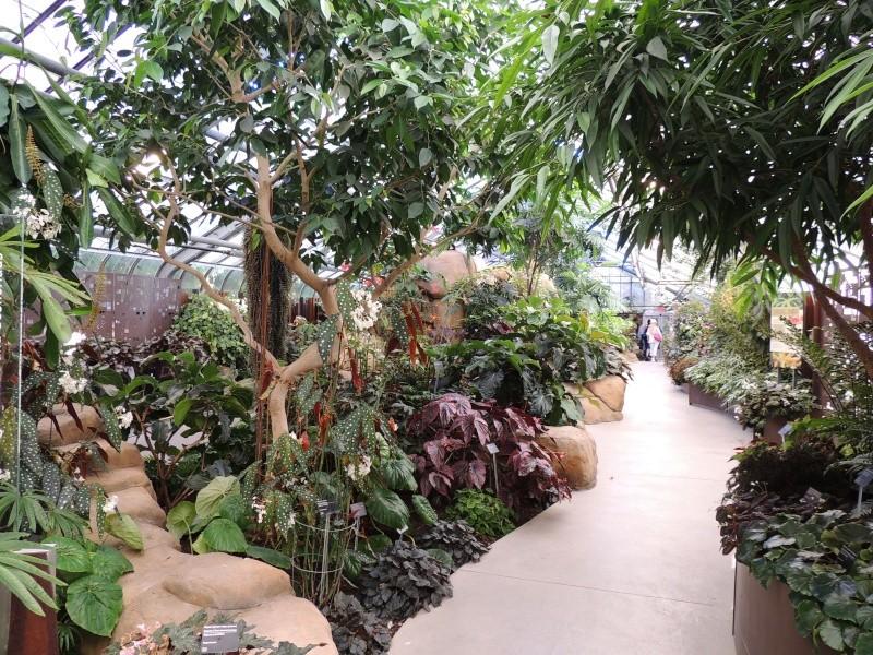 (Québec) Jardin Botanique de Montréal Dscn1417