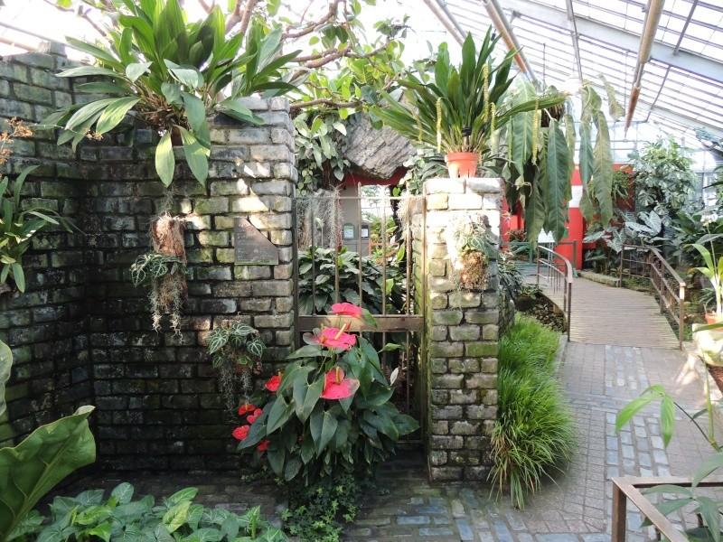 (Québec) Jardin Botanique de Montréal Dscn1423