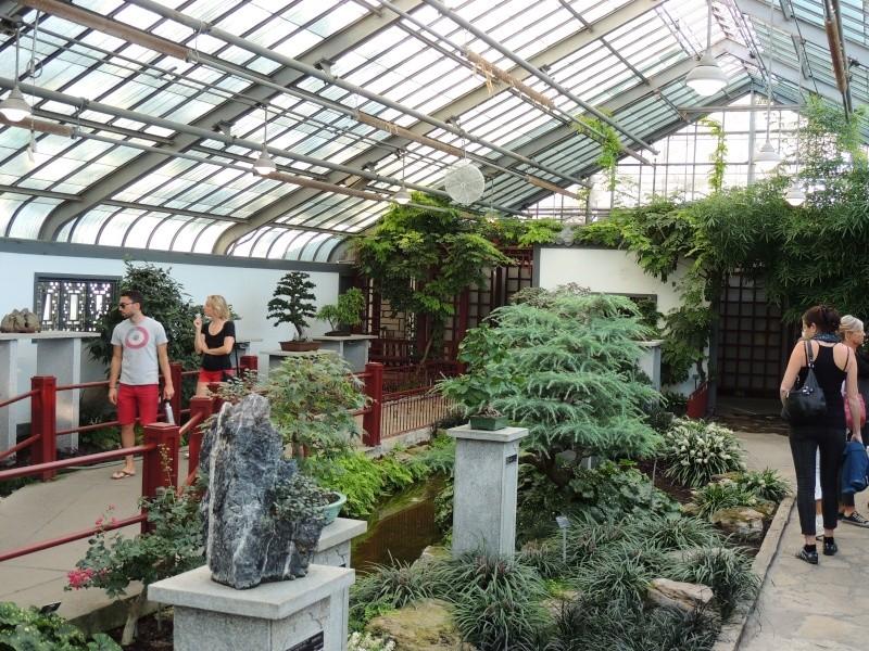 (Québec) Jardin Botanique de Montréal - Page 2 Dscn1446