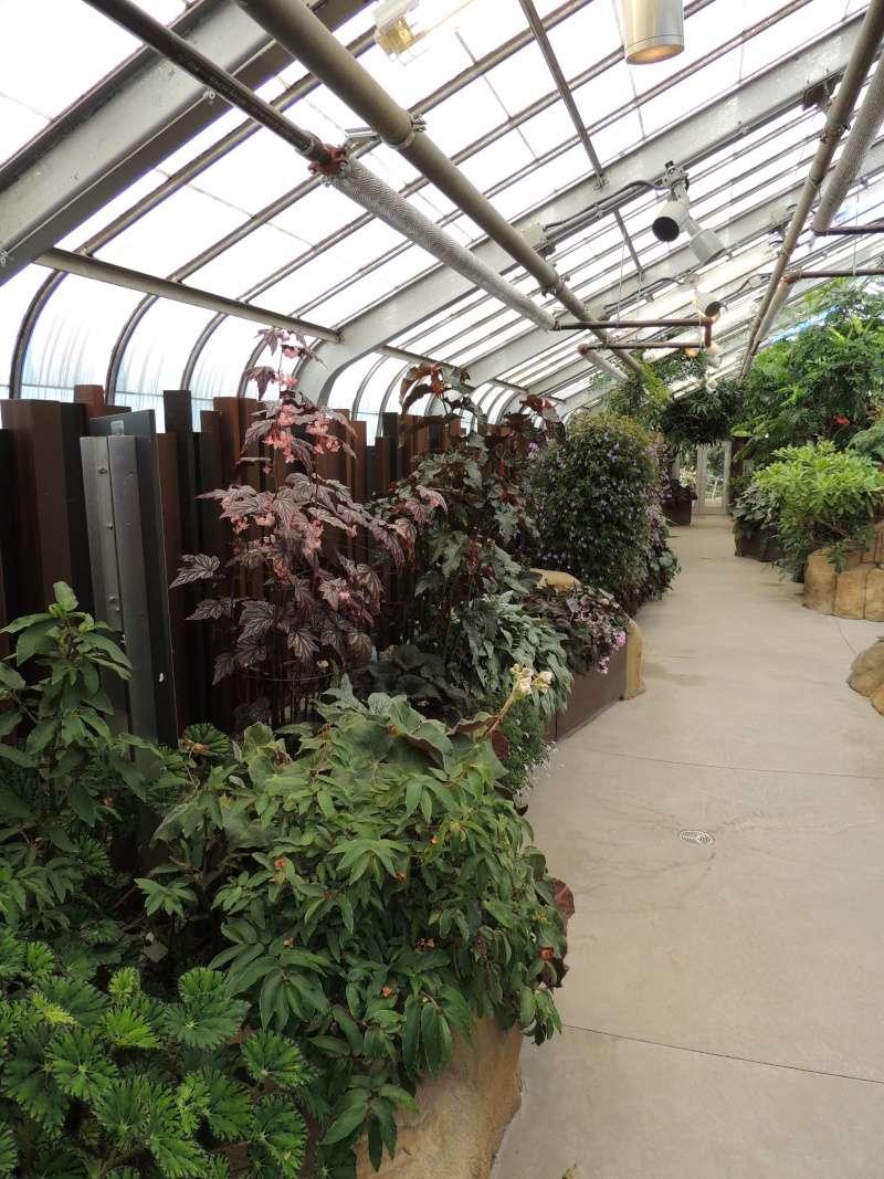 (Québec) Jardin Botanique de Montréal Dscn1517