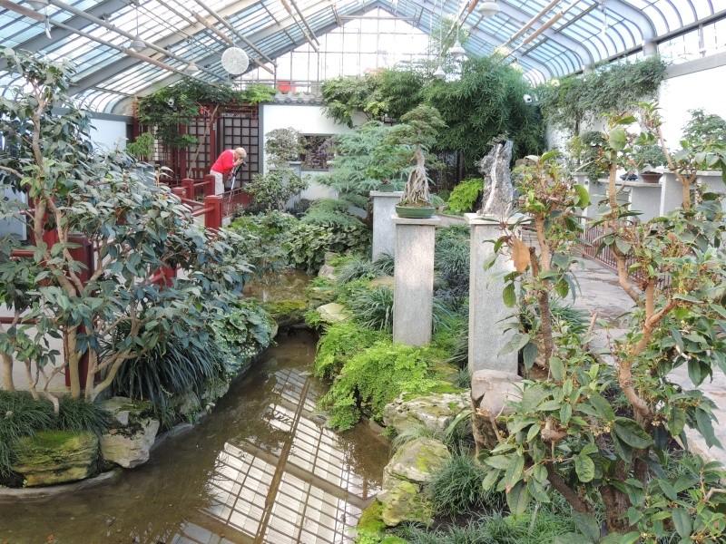 (Québec) Jardin Botanique de Montréal - Page 2 Dscn1527