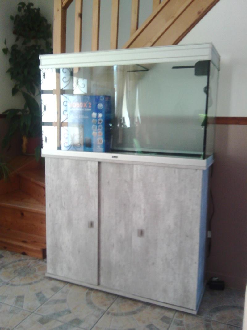 Mon nouveau aquarium Img_2010