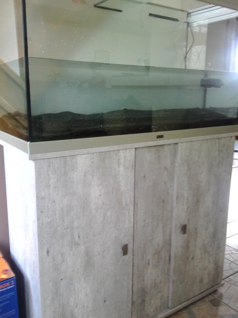 Mon nouveau aquarium Img_2013