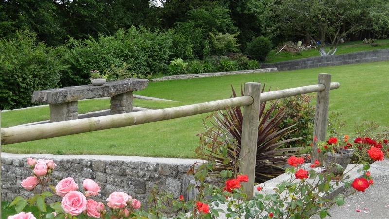 jardin fleuri   Dsc04215
