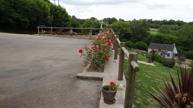 jardin fleuri   Dsc04216