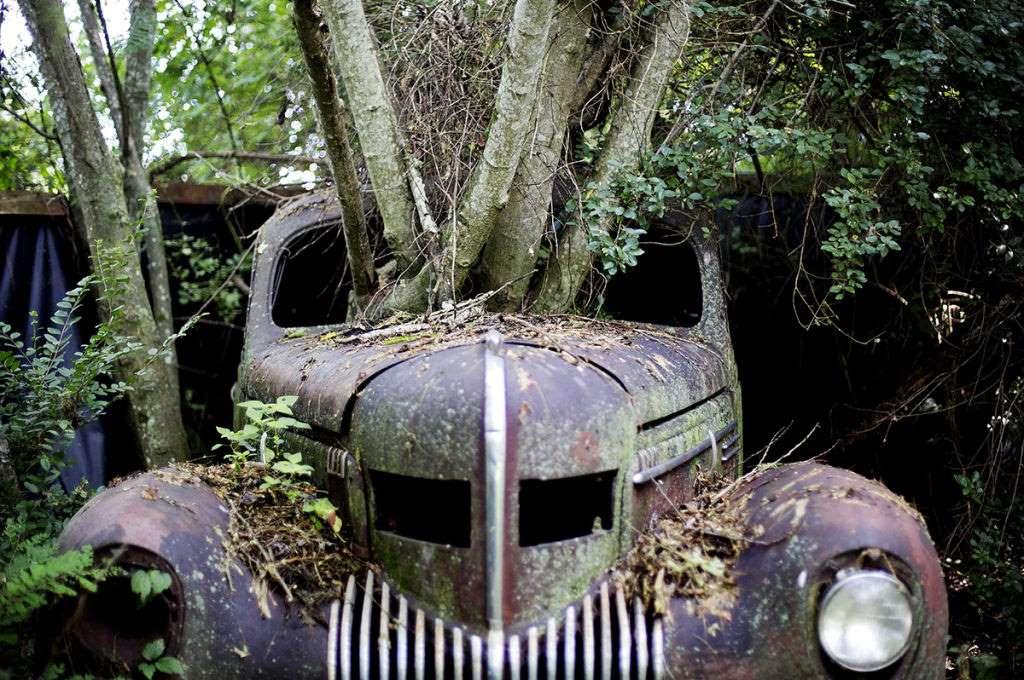 Old Car City B610