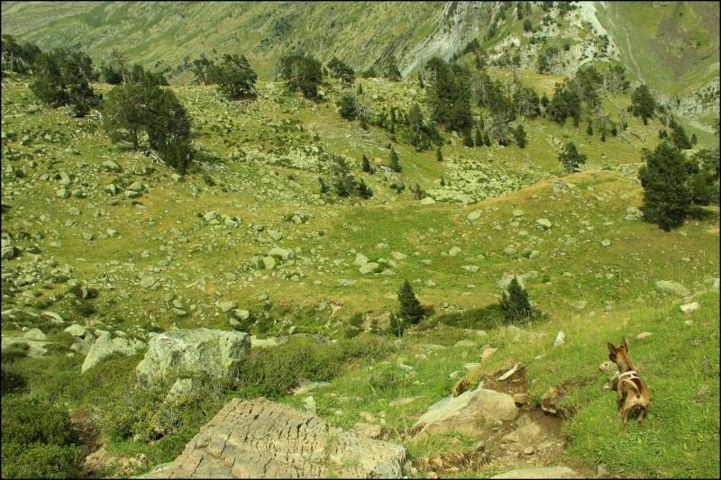 Vacances dans la vallée de Benasque - Pyrénées espagnoles Img_0113