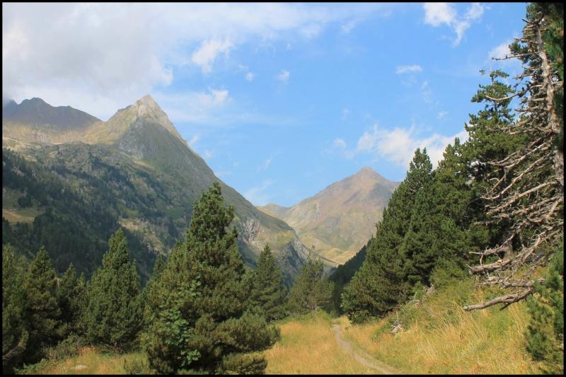 Vacances dans la vallée de Benasque - Pyrénées espagnoles Img_6710