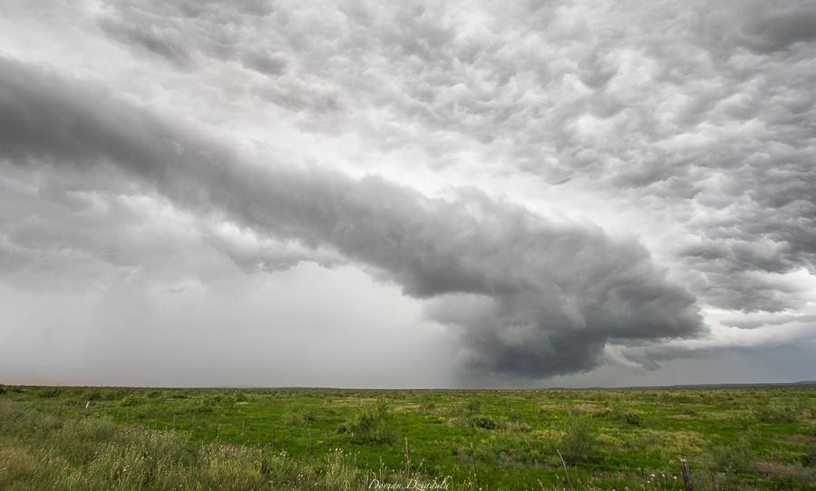 Séjour en Tornado Alley - Semaines 2 et 3 (25 mai - 6 juin 2015) Gd1a3111