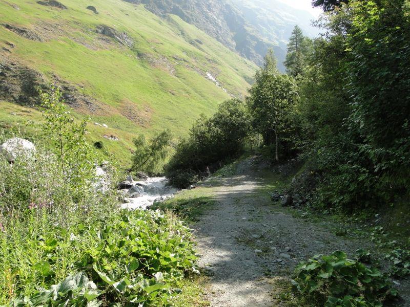 Balade dans le vallon de Champagny-le-Haut Dsc03523