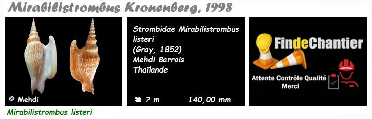 Strombidae Mirabilistrombus - Le genre, l'espèce, la planche Mirabi10