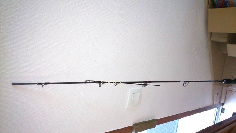 Donne canne casting cassé ; boite de magazines de pêche Dsc_2011