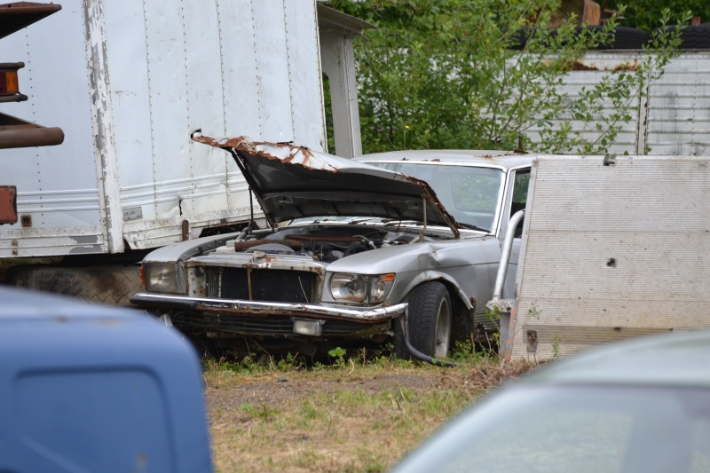 Les voitures abandonnées/oubliées (trouvailles personnelles) - Page 4 Dsc_0211