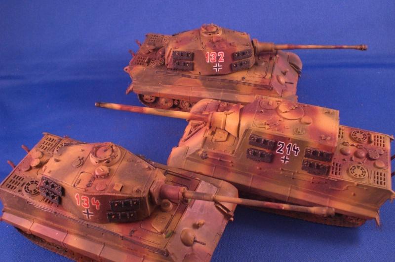 Es ist kein Mensch, es ist kein Tier. Es ist ein deutscher Panzergrenadier!  Cimg4716
